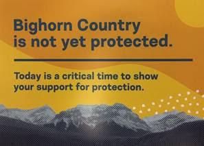 bighorn1